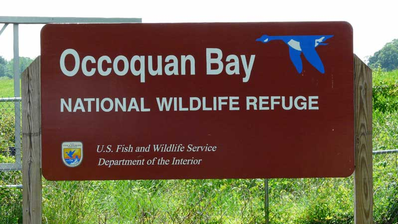 Occoquan Bay National Wildlife Refuge